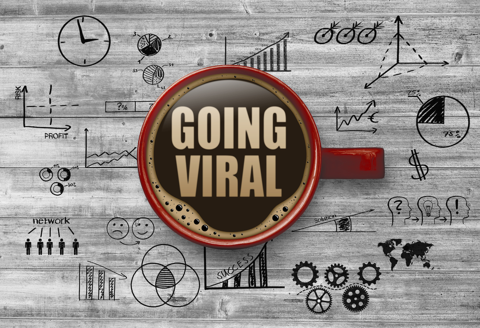 Step By Step Guide To Create Your Own Viral Website
